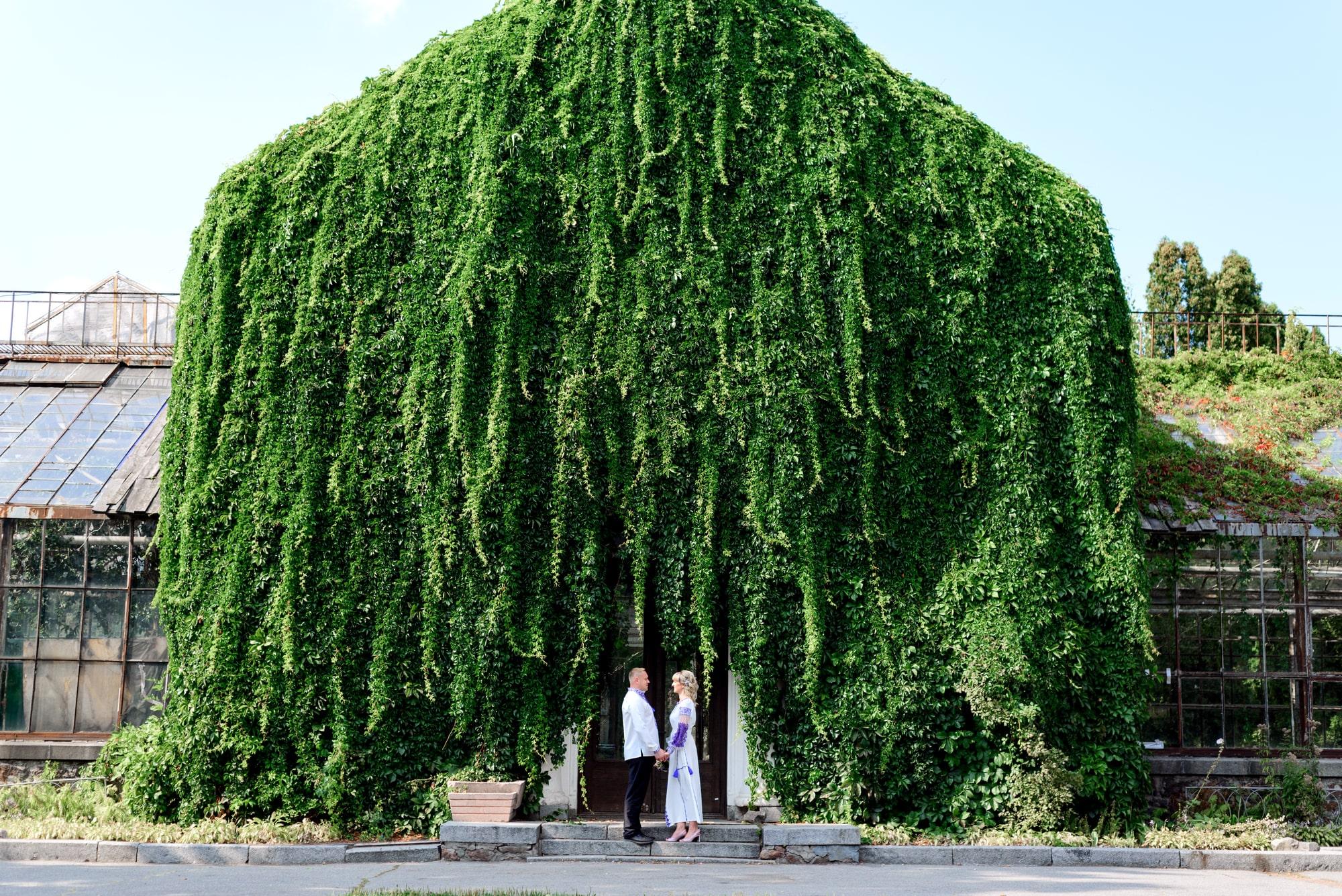 Свадебная фотосессия на Вднх - в зелени