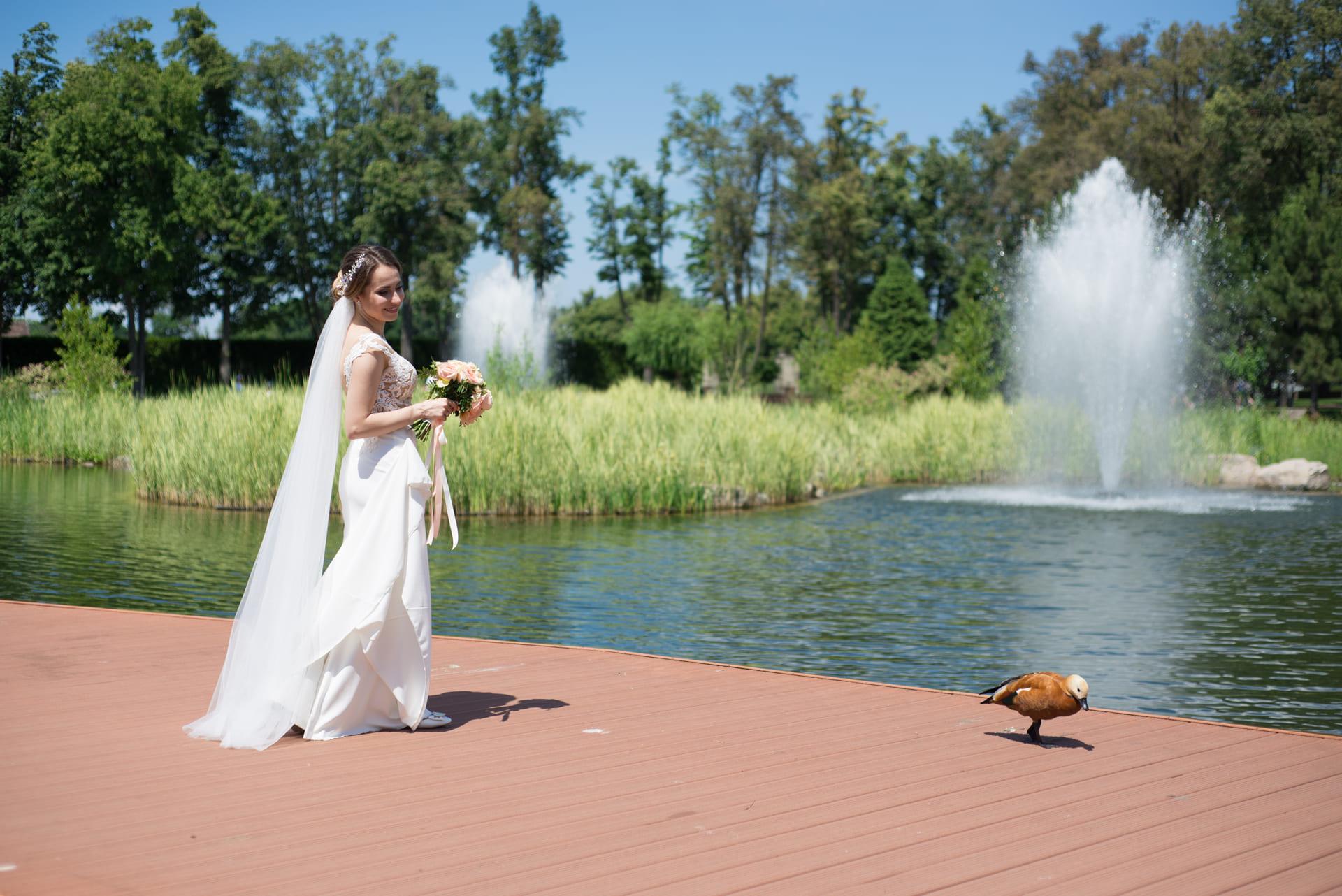 Свадебная фотосессия в Межигорье: Невеста и утка